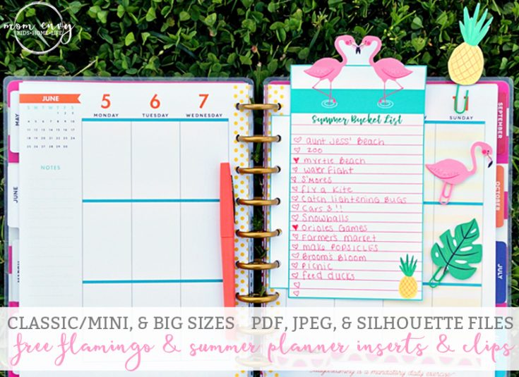 Flamingo and Summer Planner Inserts and Clips