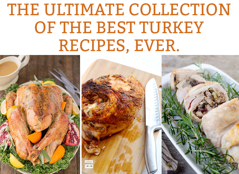 The Best Turkey Recipes. Do you need a Thanksgiving turkey recipe? We've got you covered with the most delicious turkey recipes. #thanksgivingrecipes #turkeyrecipes
