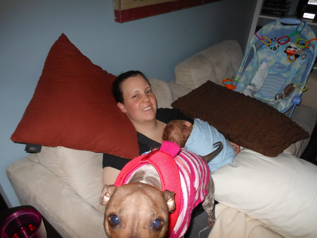 Mom holding a newborn baby asleep on her lap. Dog photo bombing the picture up close to the camera, sitting on the Mom's lap.